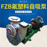 FZB氟塑料自吸泵耐腐耐磨大流量化工水泵 自吸式自吸泵厂家