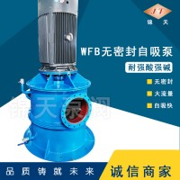 厂家直销 WFB型无密封自控自吸泵污水泵 大流量自吸泵