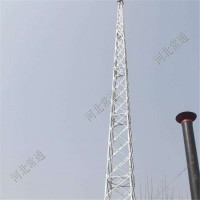 避雷塔厂家批发10-60米避雷铁塔 角钢避雷针塔 避雷针铁塔